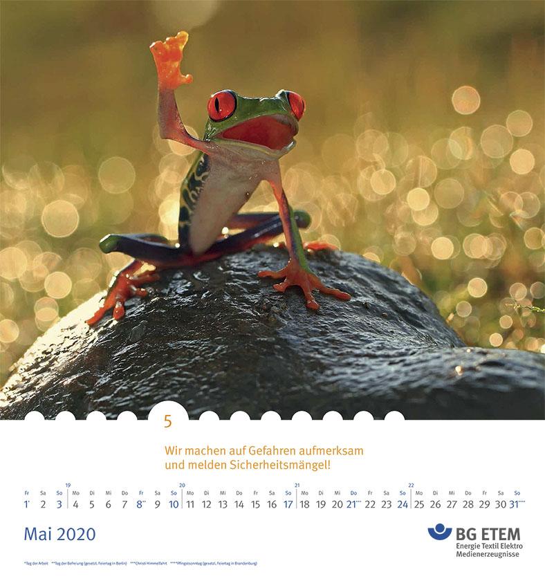 Auf der Kalenderseite ist ein Frosch abgebildet.