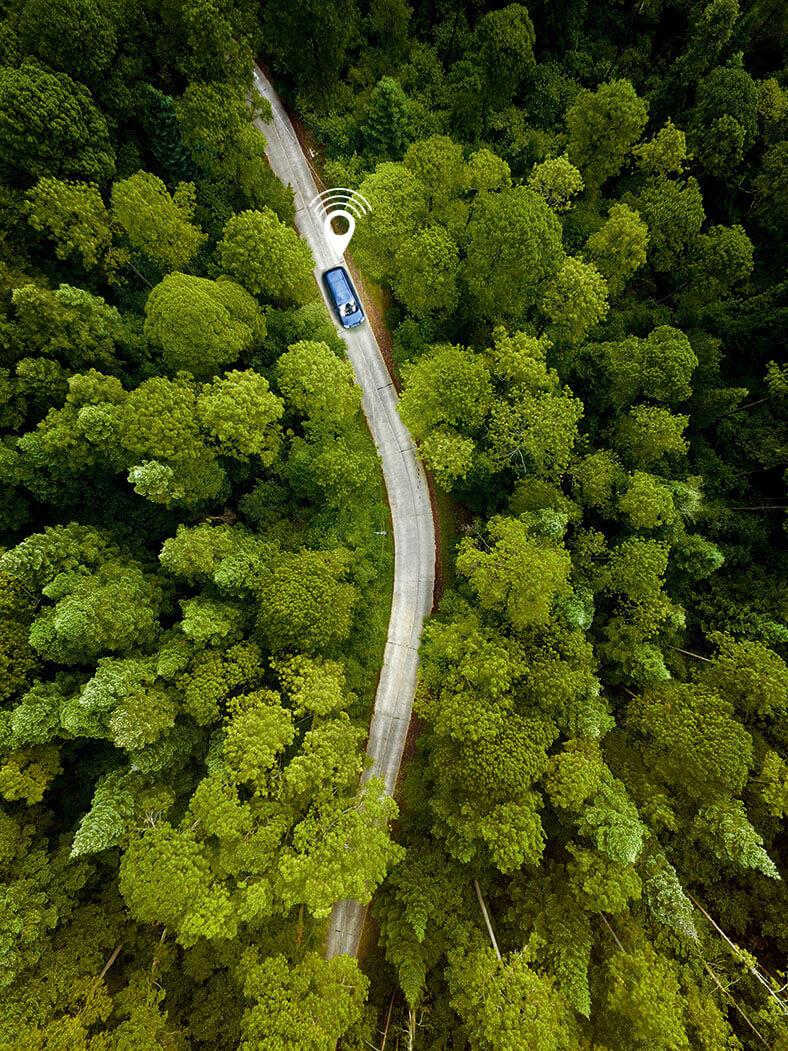 Diese ganzseitige Abbildung zeigt ein Waldstück. In der Mitte ist eine Straße zu erkennen, auf dem ein blauer Pkw fährt, markiert mit einem GPS-Piktogramm.