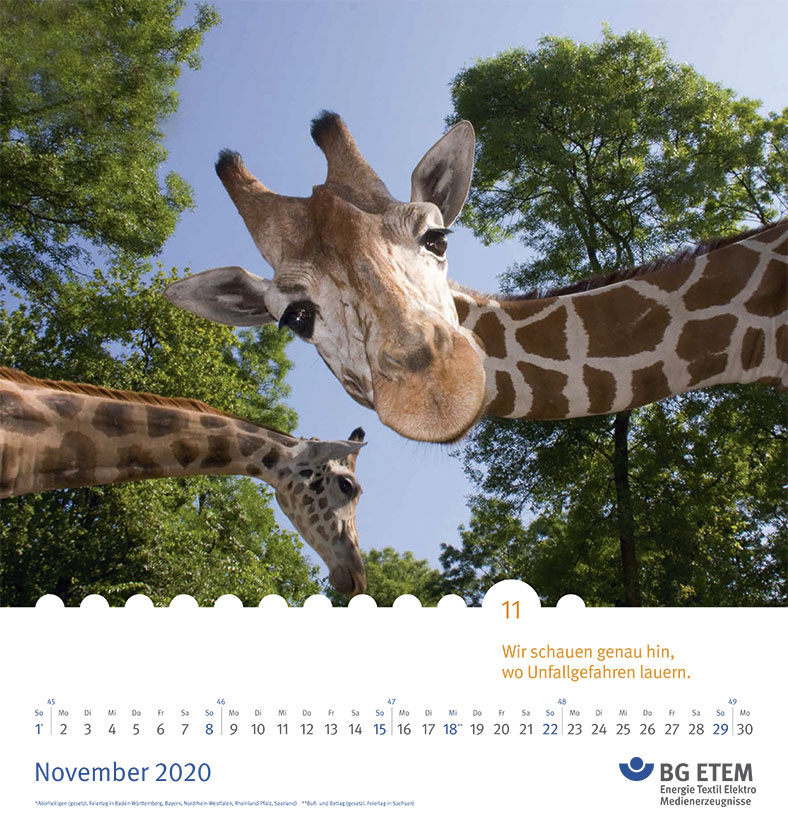 Das Bild zeigt ein Kalenderblatt. Im oberen Teil mit dem Foto von zwei Giraffenköpfen vor blauem Himmel udn Baumkronen. Im unteren Teil ist die Tageseinteilung für den Monat November und das BG ETEM Logo zu sehen.